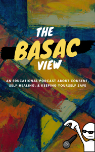 The BASAC View Podcast poster